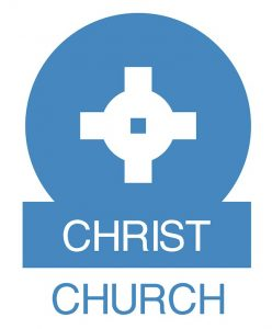 Logo small blue